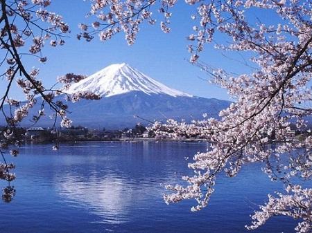 Thông tin về cơ quan đại diện Việt Nam tại Nhật Bản